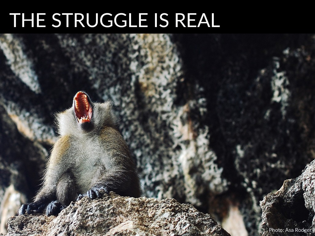 Photo: Asa Rodger THE STRUGGLE IS REAL