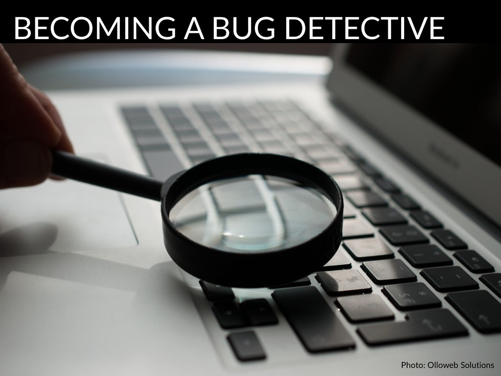Photo: Olloweb Solutions BECOMING A BUG DETECTI...