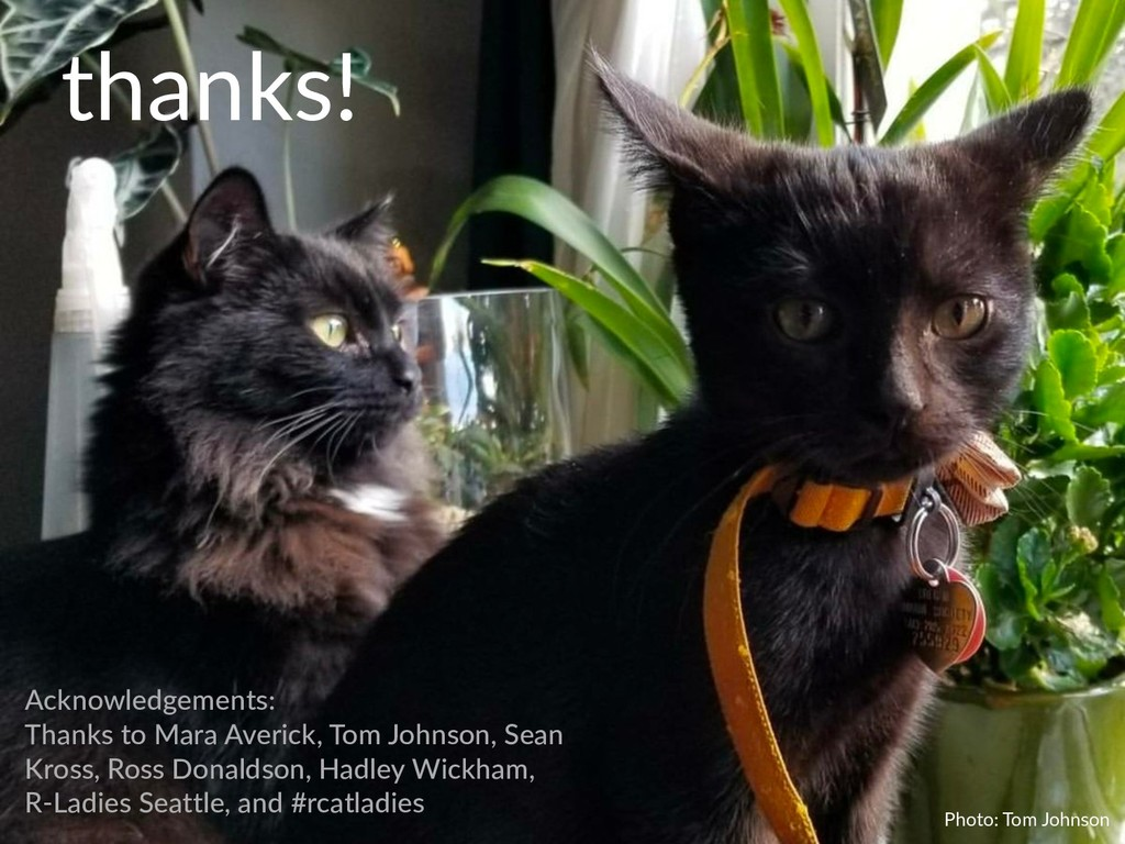 Photo: Tom Johnson thanks! Acknowledgements: Th...