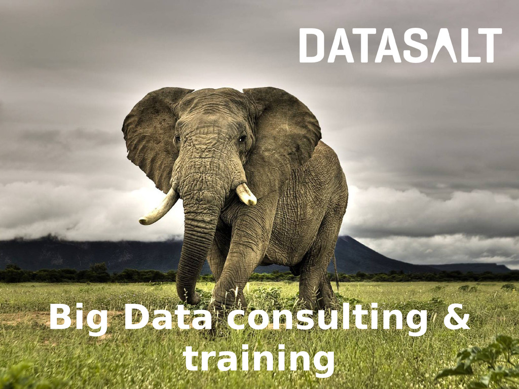 Big Data consulting & training