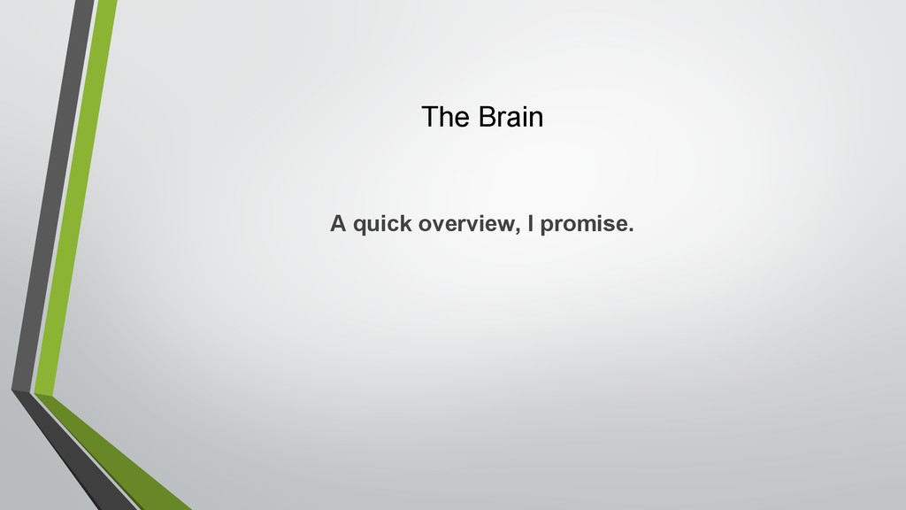 The Brain A quick overview, I promise.
