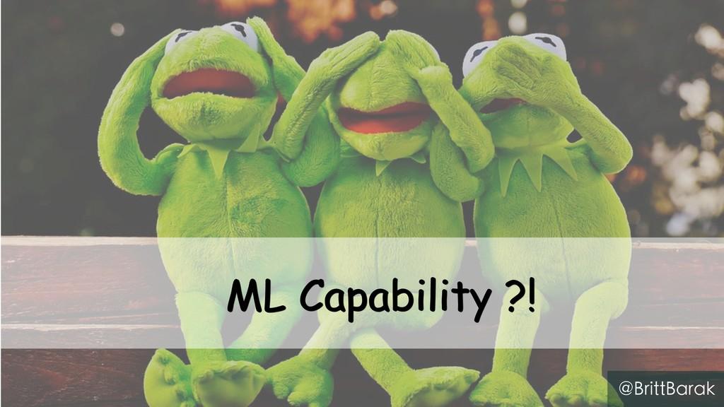ML Capability ?! @BrittBarak