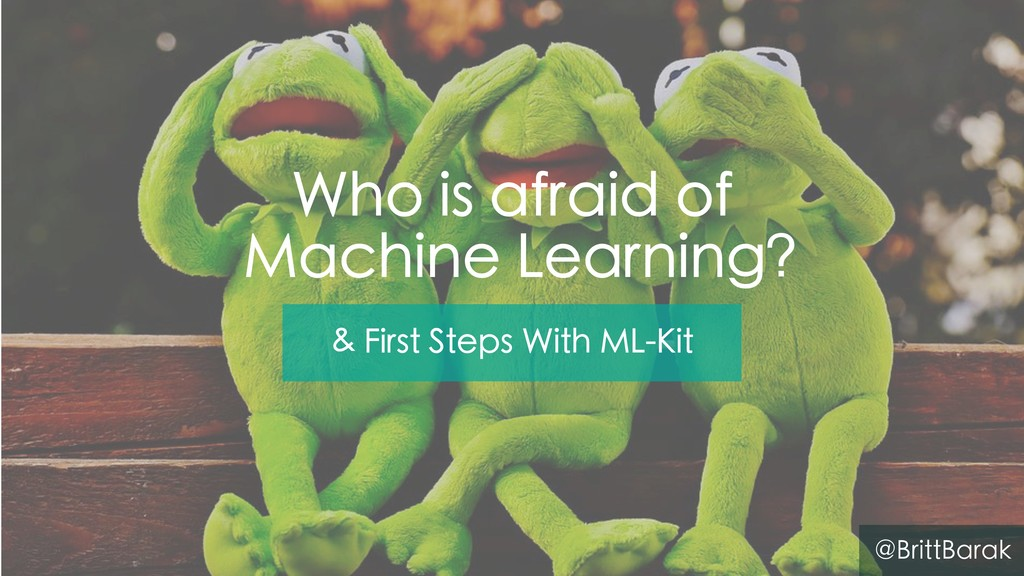 Who is afraid of Machine Learning? & First Step...