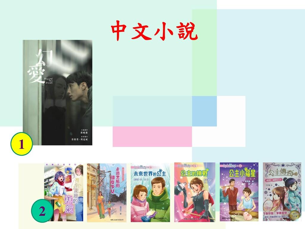 中文小說 1 2