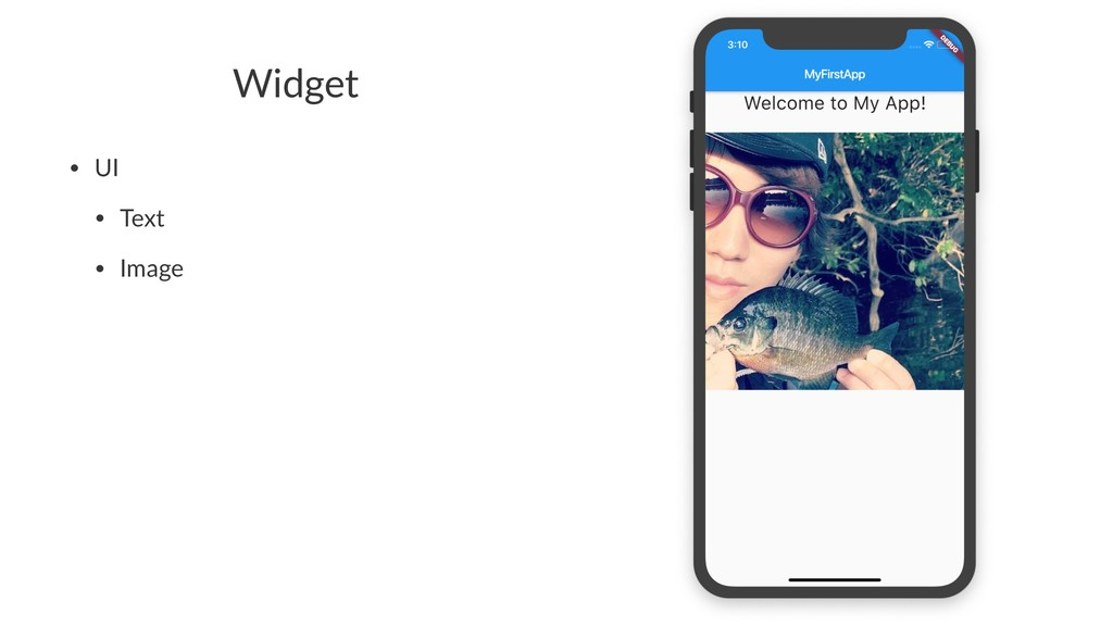 Widget • UI • Text • Image