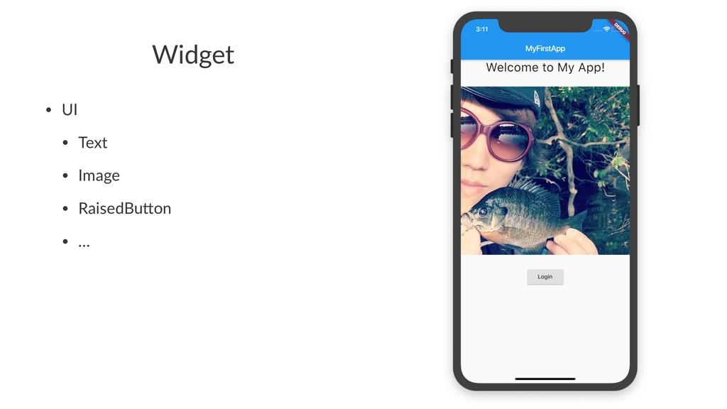 Widget • UI • Text • Image • RaisedBu1on • …