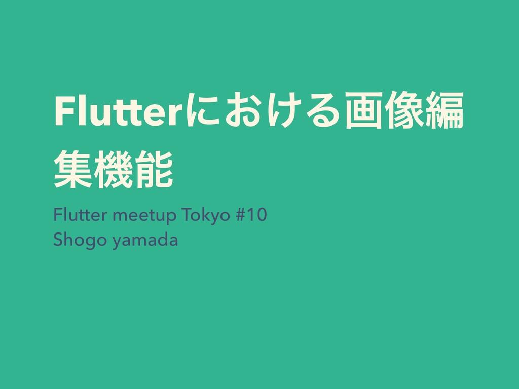 Flutterʹ͓͚Δը૾ฤ ूػ Flutter meetup Tokyo #10 Sho...