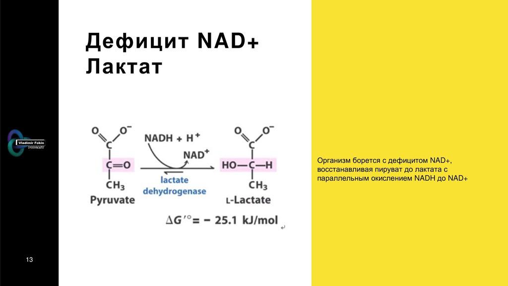 13 Дефицит NAD+ Лактат Организм борется с дефиц...