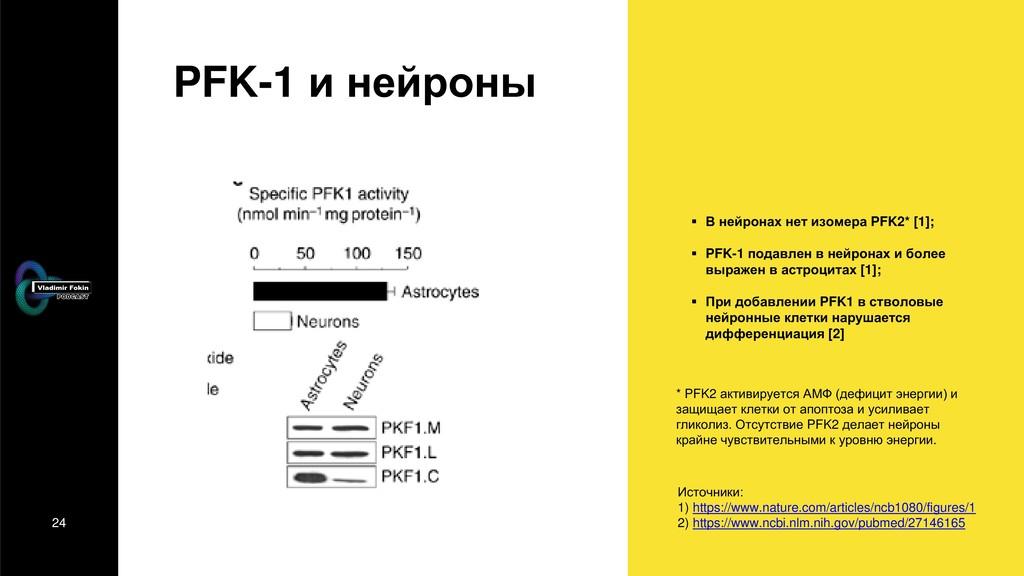 24 PFK-1 и нейроны  В нейронах нет изомера PFK...