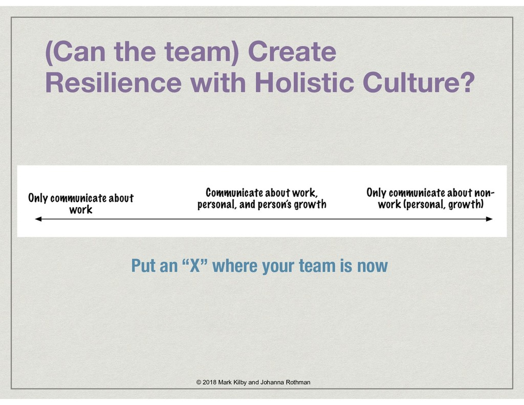 (Can the team) Create Resilience with Holistic ...