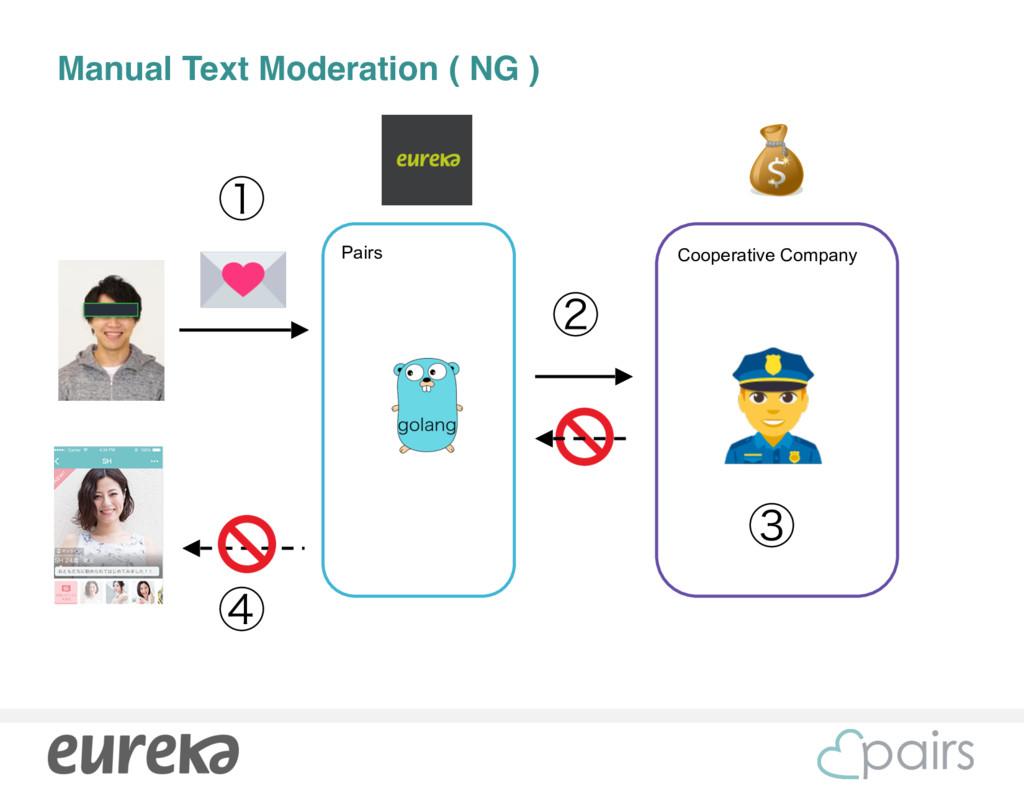 Cooperative Company Manual Text Moderation ( NG...