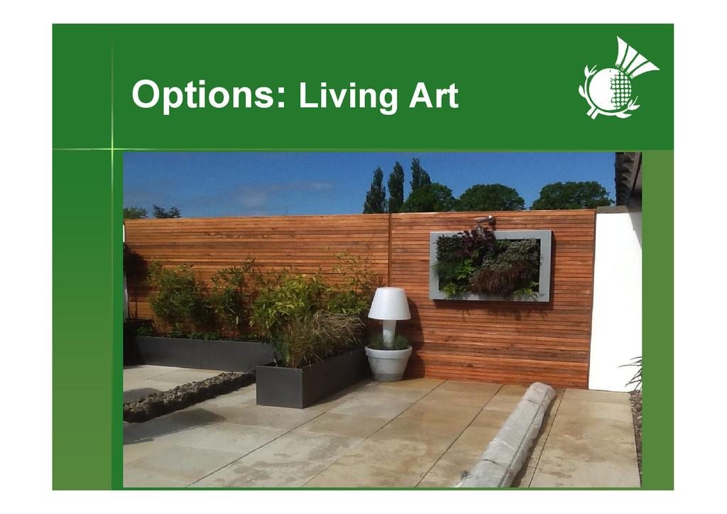 Options: Living Art