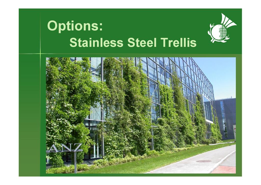Options: Stainless Steel Trellis