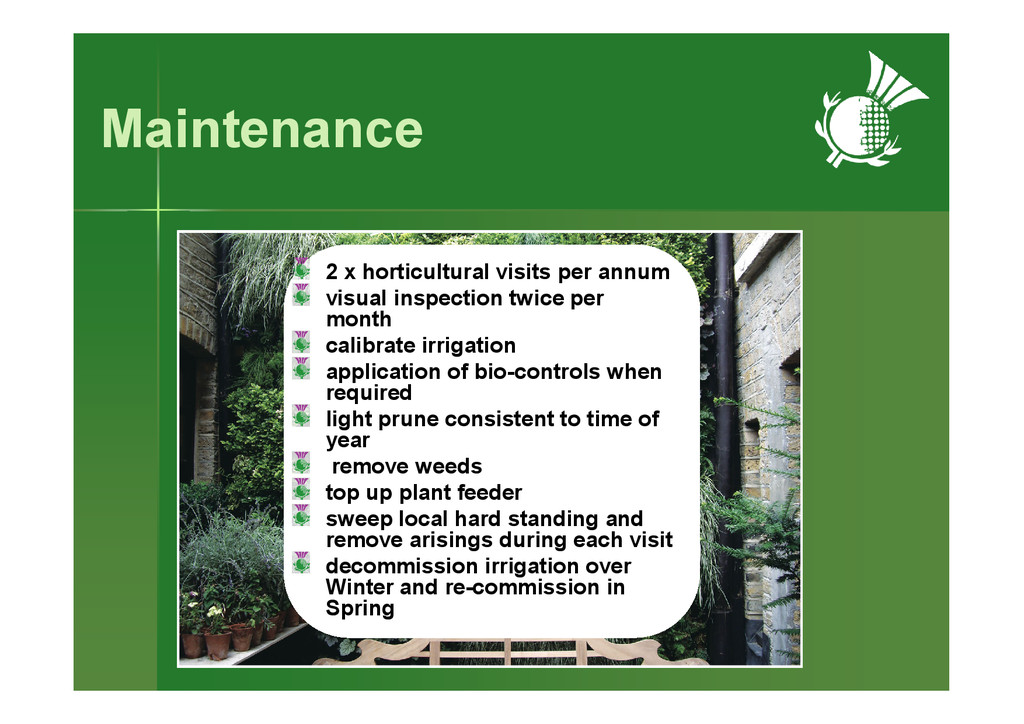Maintenance 2 x horticultural visits per annum ...