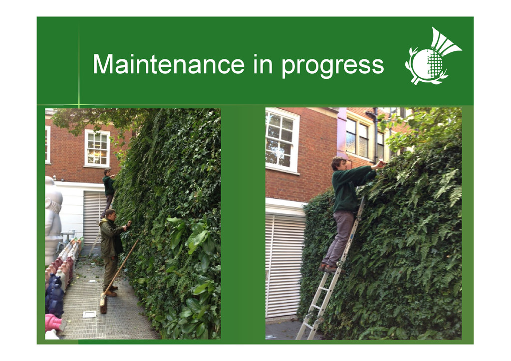 Maintenance in progress
