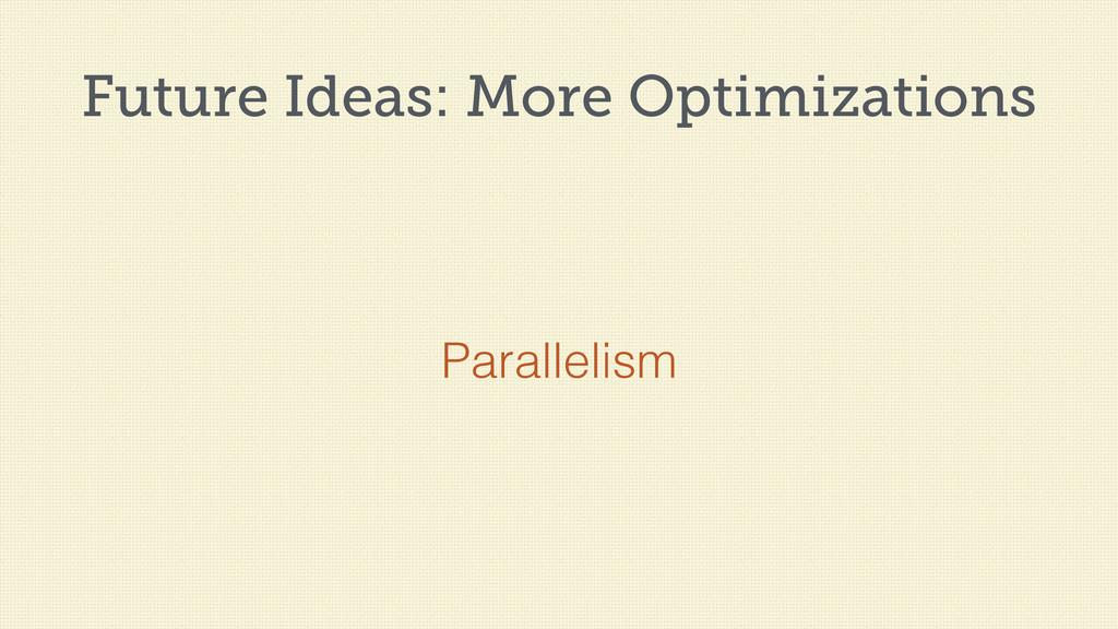 Future Ideas: More Optimizations Parallelism