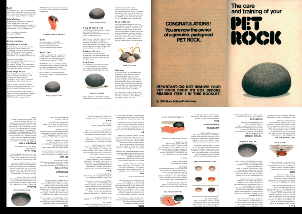 Item 1 Your new rock is a very sensitive pet an...