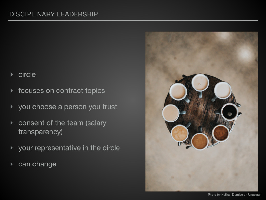 DISCIPLINARY LEADERSHIP ▸ circle   ▸ focuses on...