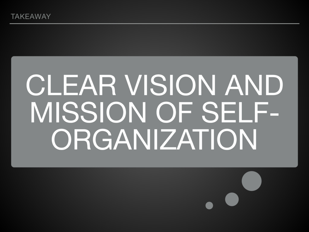 CLEAR VISION AND MISSION OF SELF- ORGANIZATION ...