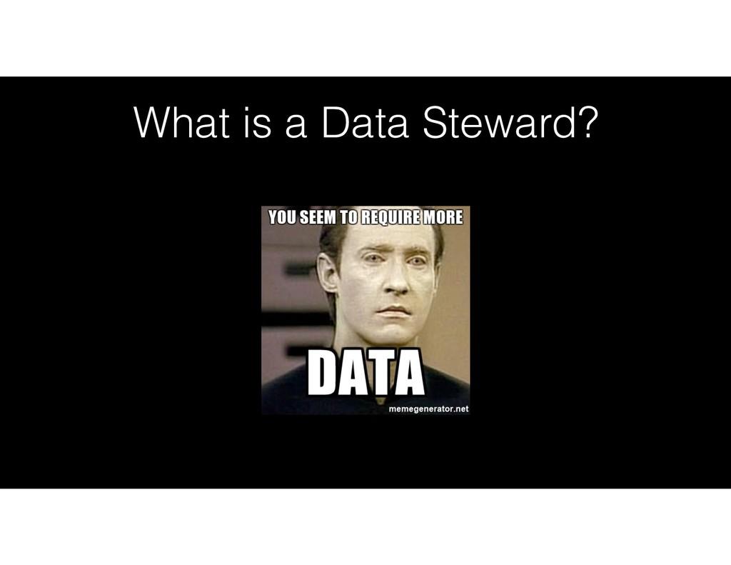 What is a Data Steward?