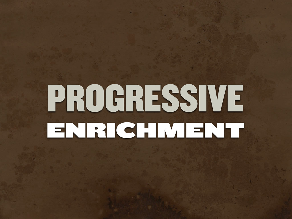 ENRICHMENT PROGRESSIVE