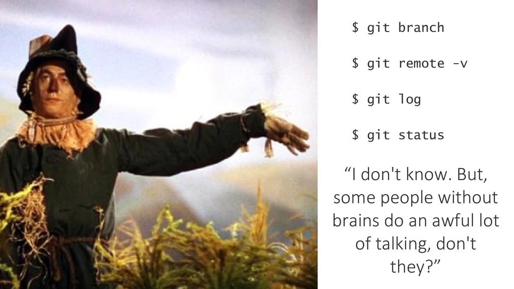 $ git branch $ git remote -v $ git status $ git...