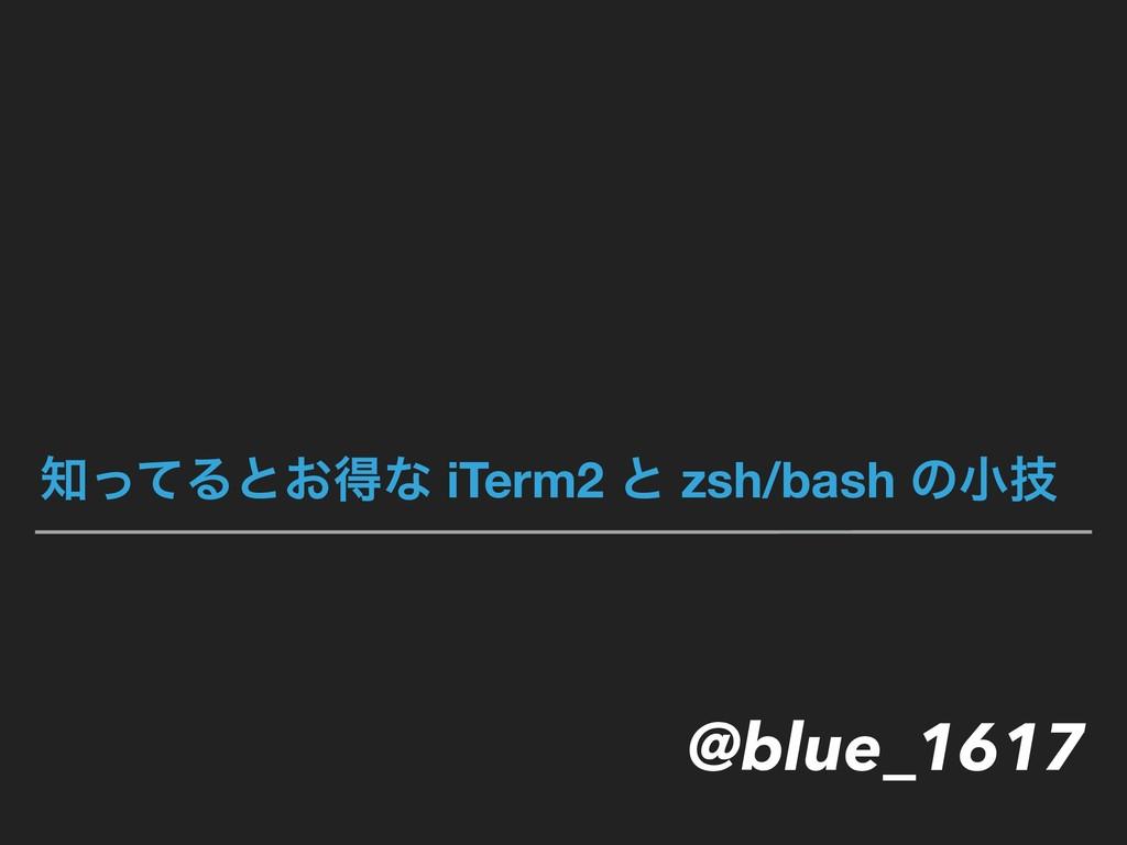 ͬͯΔͱ͓ಘͳ iTerm2 ͱ zsh/bash ͷখٕ @blue_1617