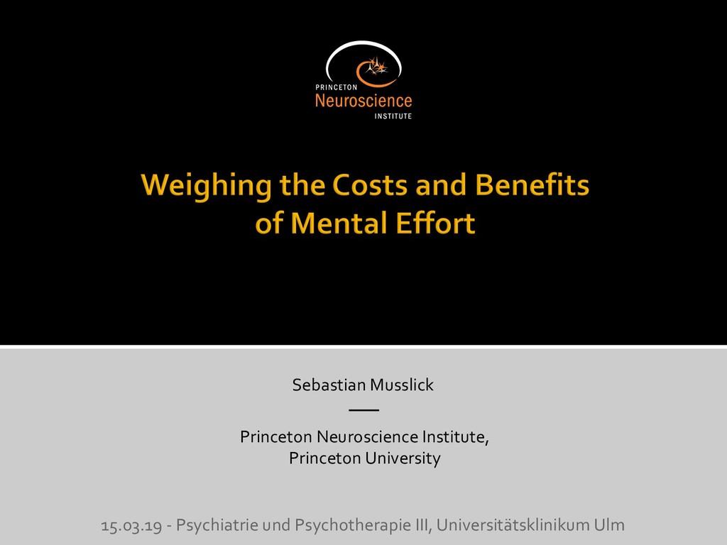 Sebastian Musslick Princeton Neuroscience Insti...