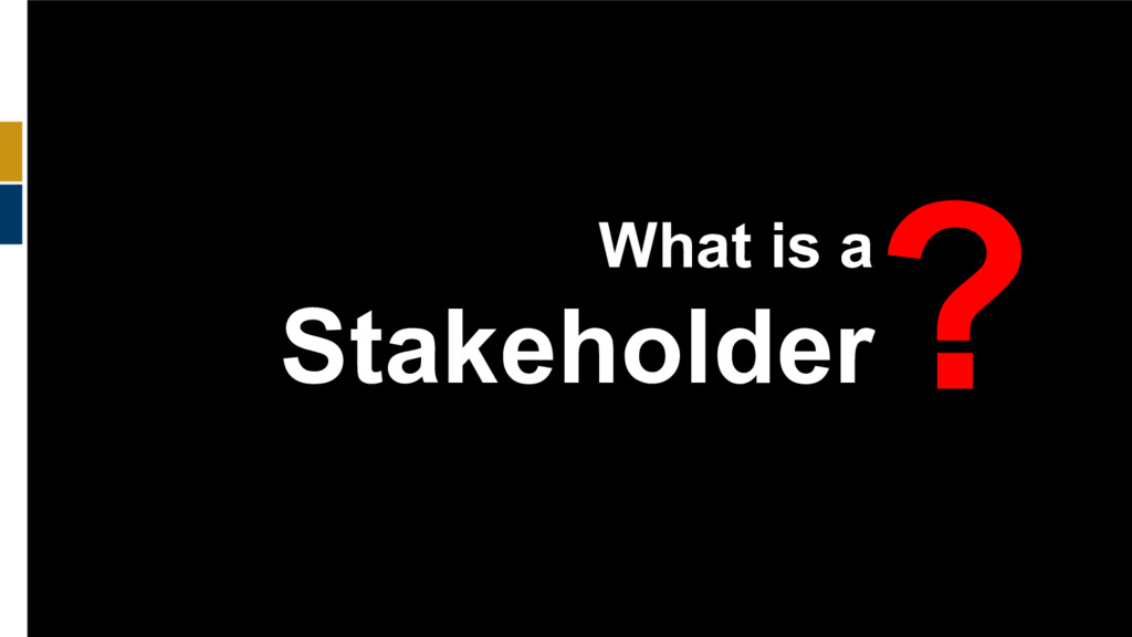 45 What is a Stakeholder ?