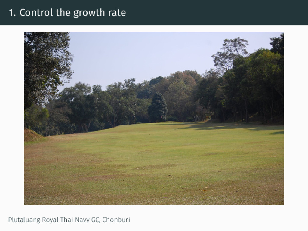 1. Control the growth rate Plutaluang Royal Tha...