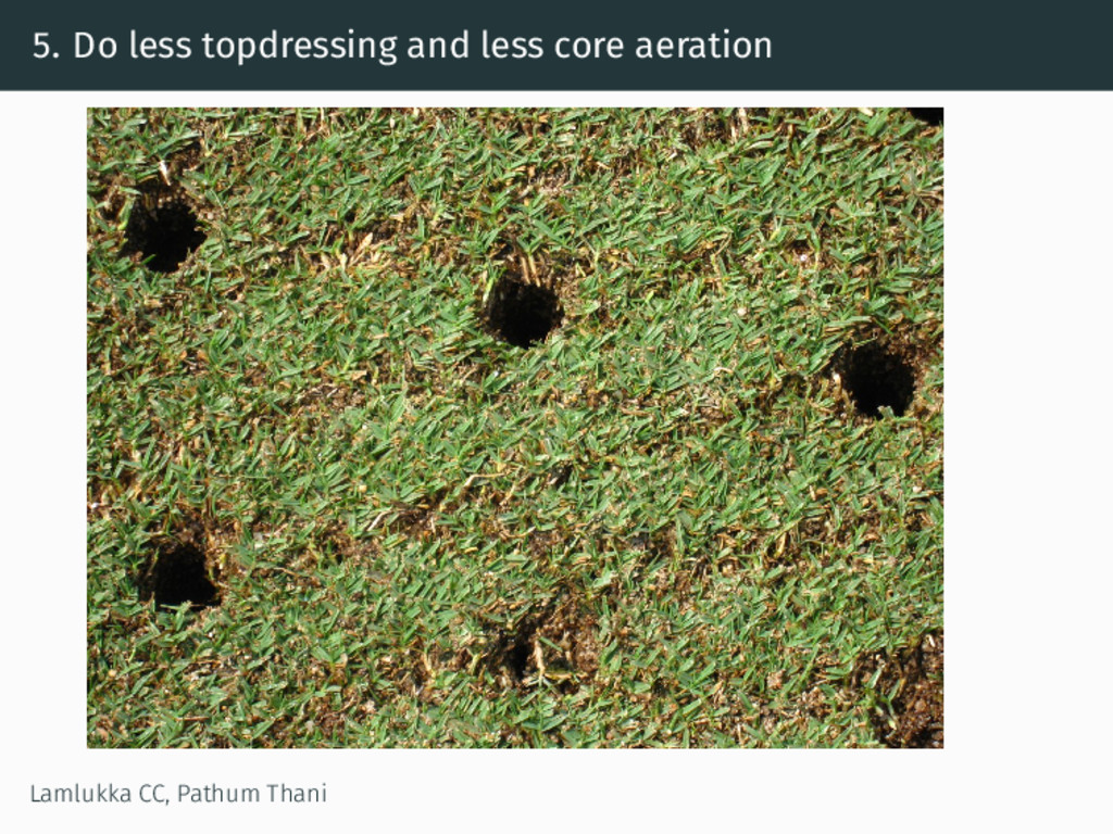 5. Do less topdressing and less core aeration L...
