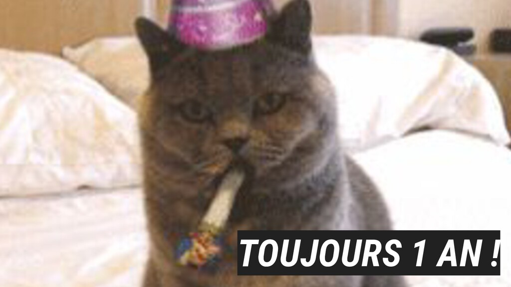 TOUJOURS 1 AN !