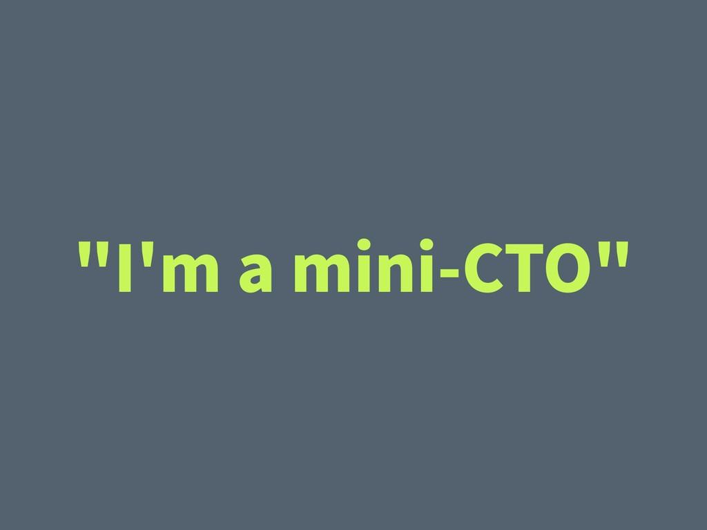 """""""I'm a mini-CTO"""""""