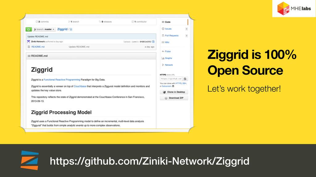 https://github.com/Ziniki-Network/Ziggrid Ziggr...