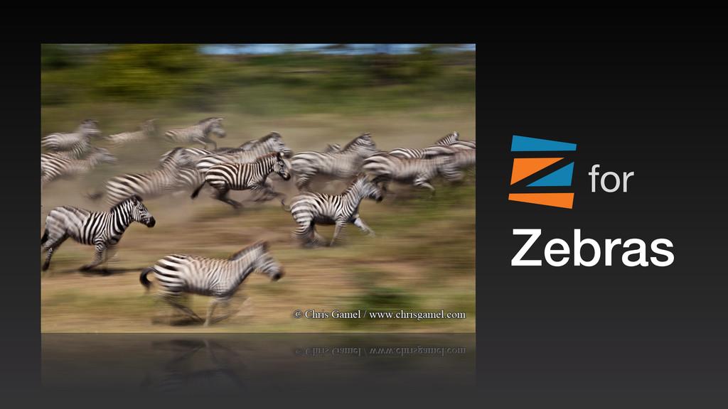 Zebras for