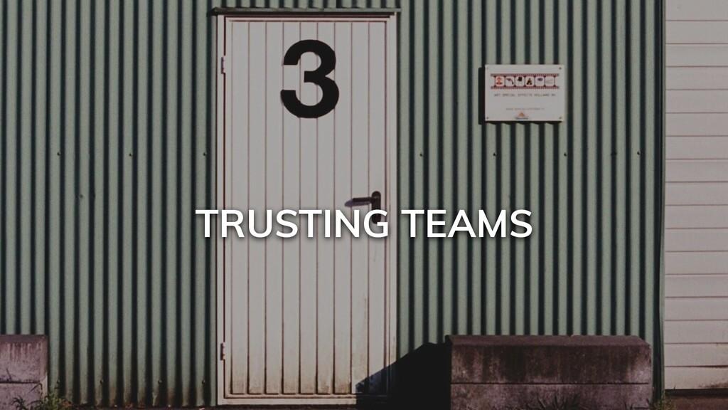 TRUSTING TEAMS
