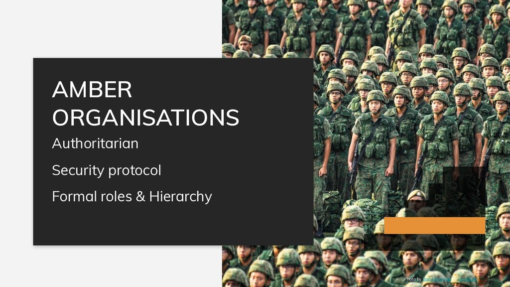 Authoritarian Security protocol Formal roles & ...