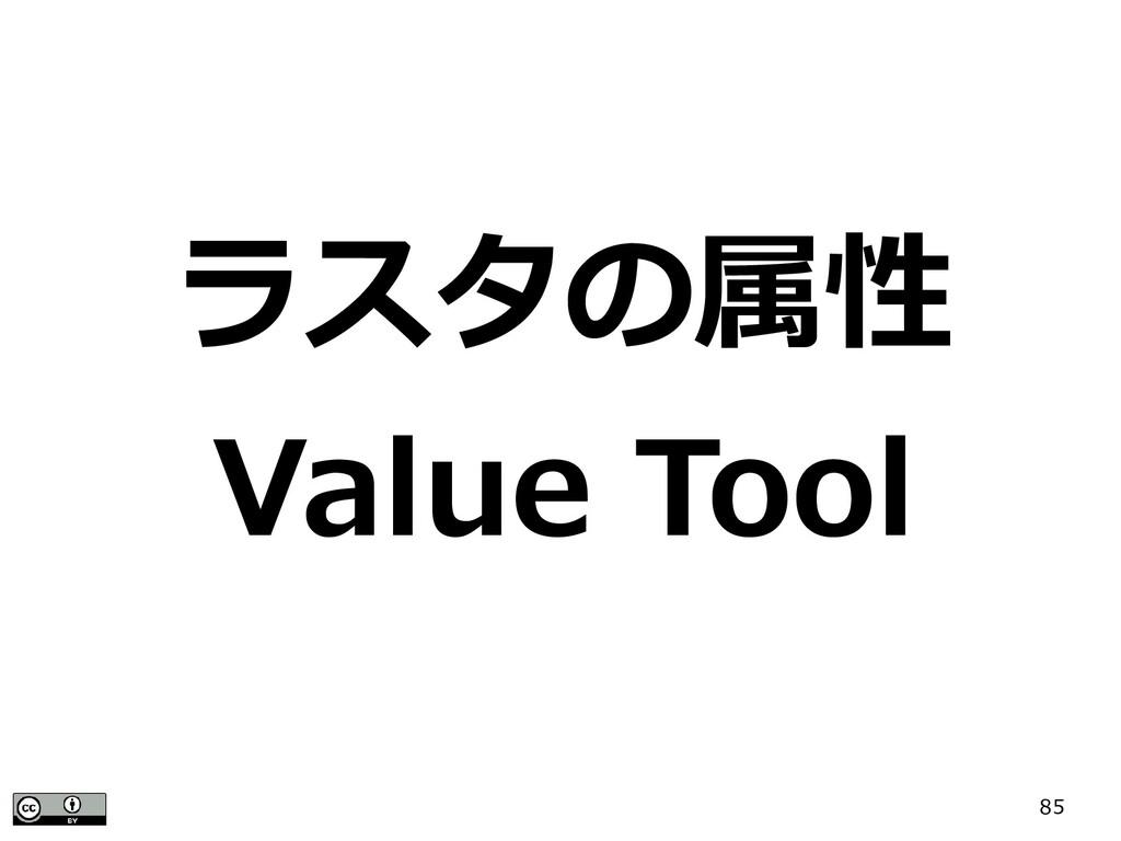 85 ラスタの属性 Value Tool