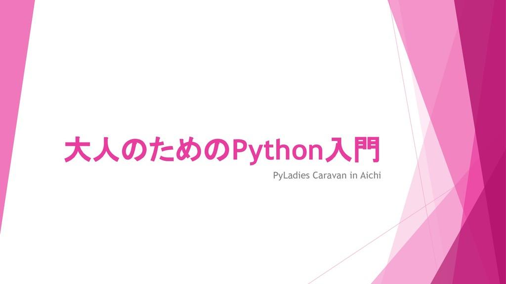大人のためのPython入門 PyLadies Caravan in Aichi