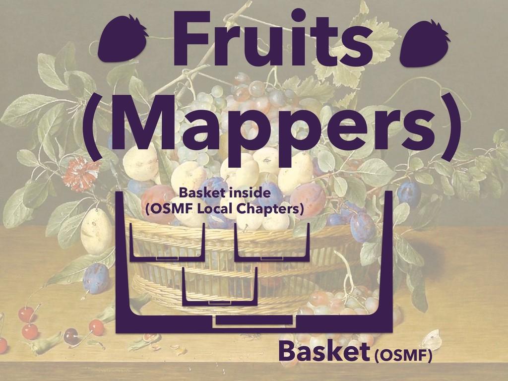 Basket (OSMF) Basket inside (OSMF Local Chapter...