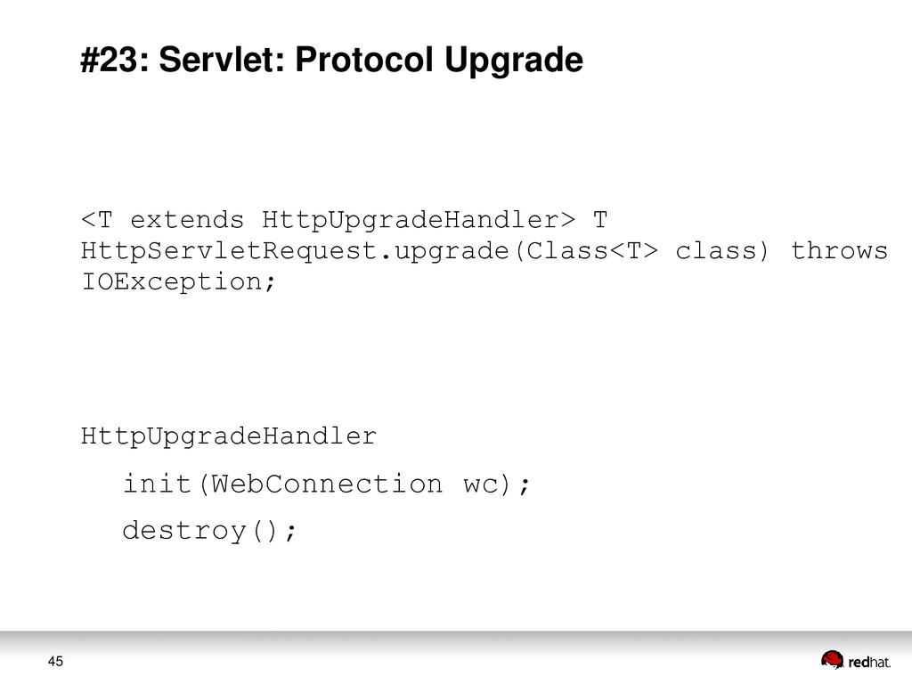 45 #23: Servlet: Protocol Upgrade <T extends Ht...