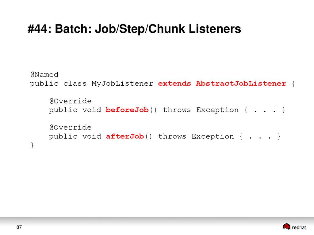 87 #44: Batch: Job/Step/Chunk Listeners @Named ...