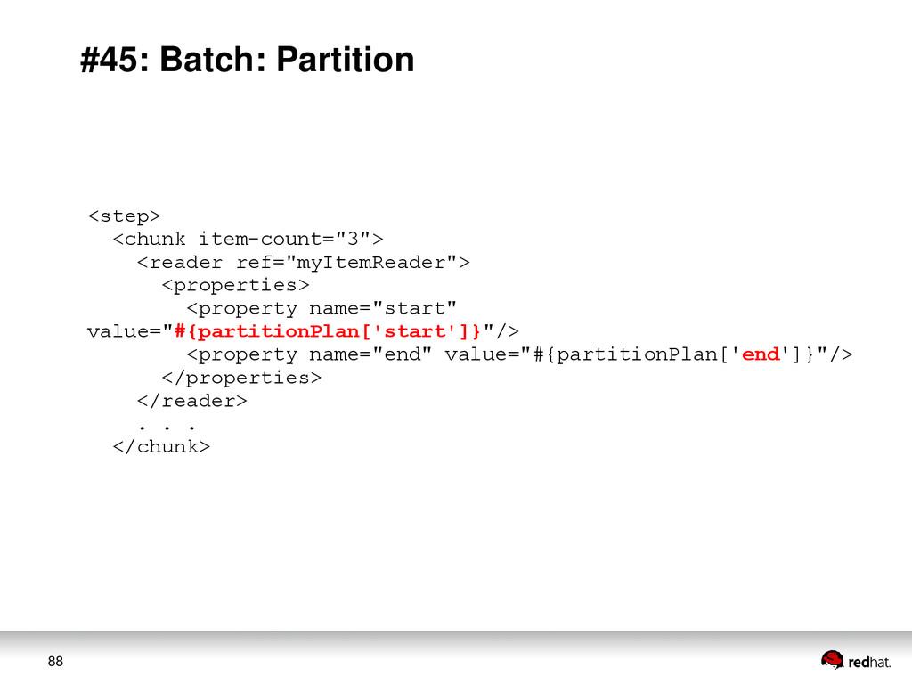 88 #45: Batch: Partition <step> <chunk item-cou...