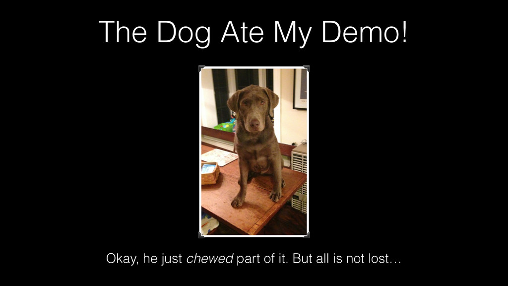 The Dog Ate My Demo! Okay, he just chewed part ...