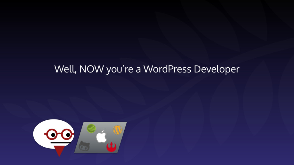 Well, NOW you're a WordPress Developer