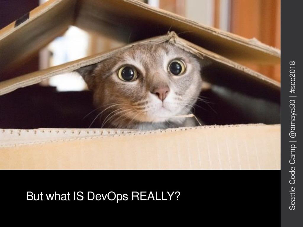 But what IS DevOps REALLY? Seattle Code Camp   ...