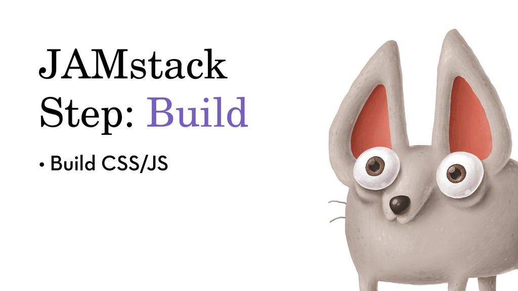 JAMstack Step: Build • Build CSS/JS