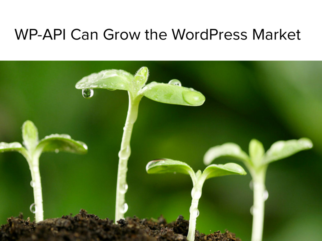 WP-API Can Grow the WordPress Market