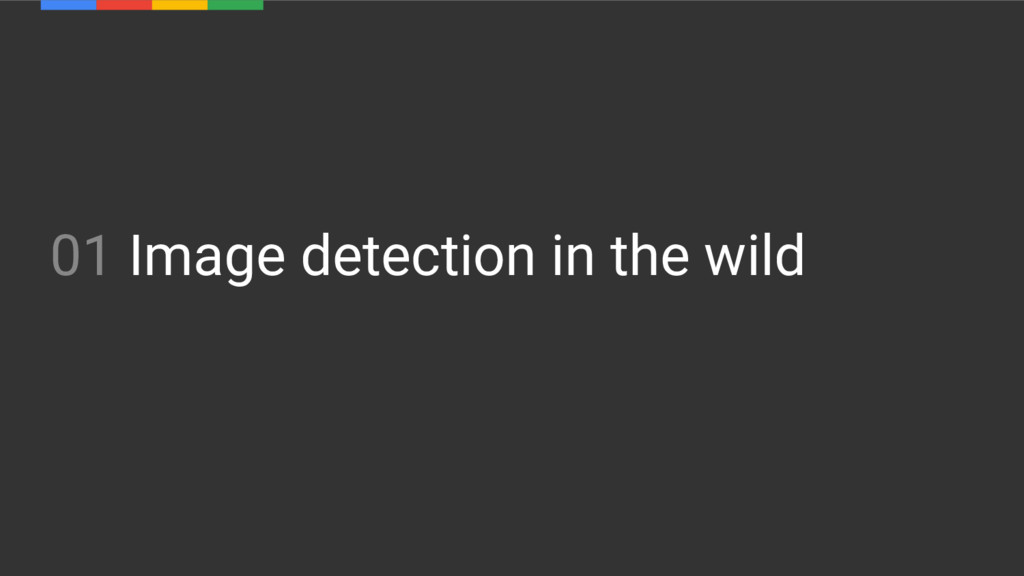 01 Image detection in the wild