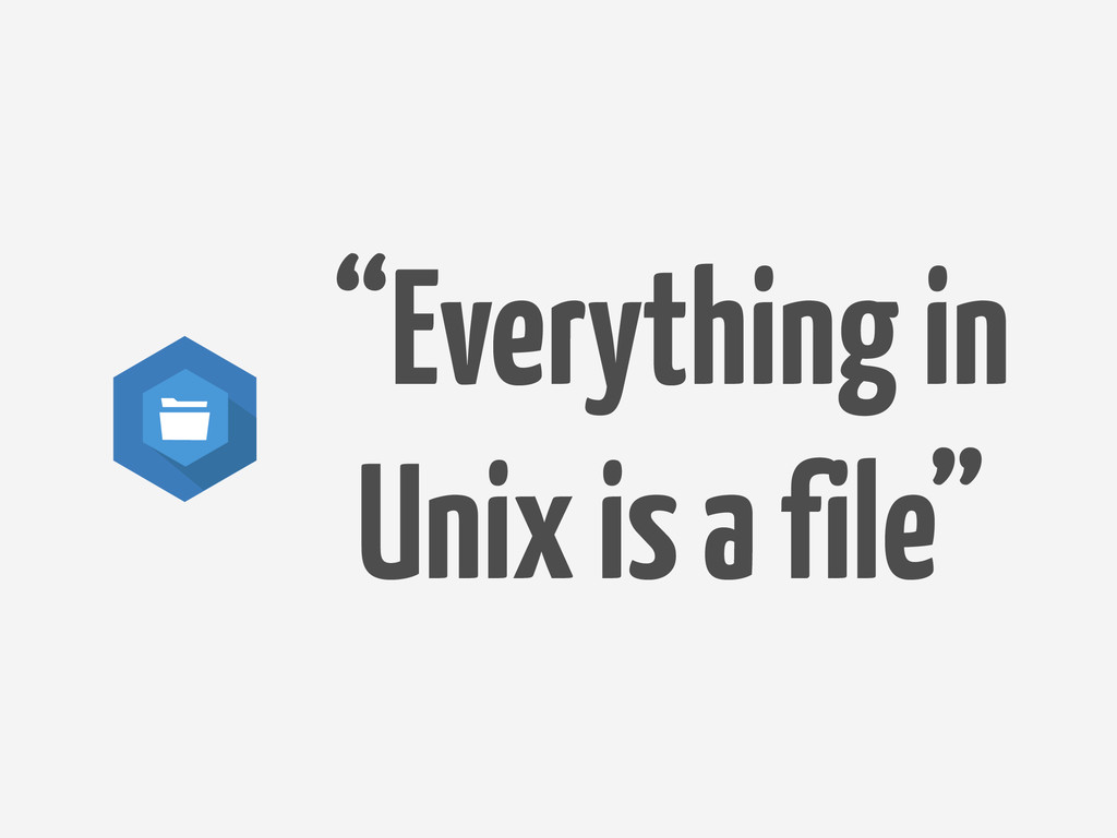 """Everything in Unix is a file"""